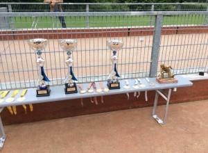 Pokale + Medallien